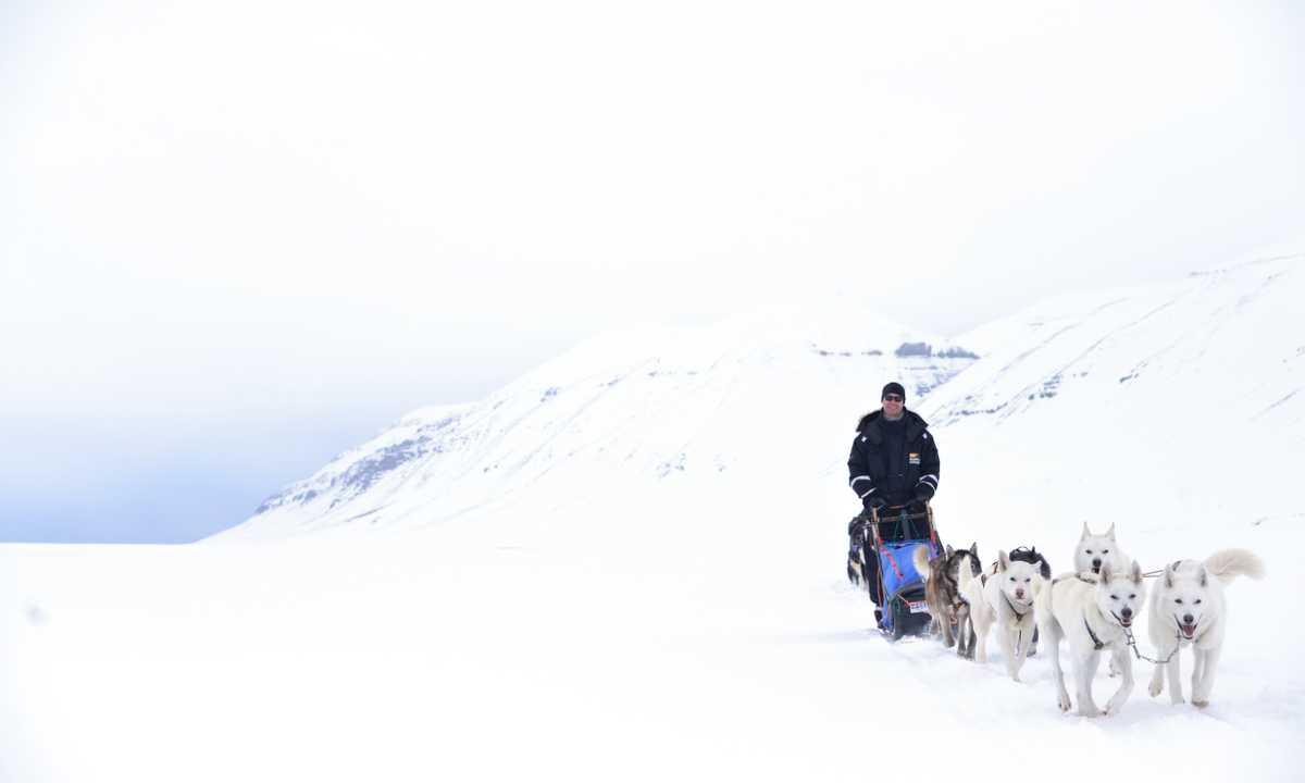 BC_4_BC_RDT_Dogsledding
