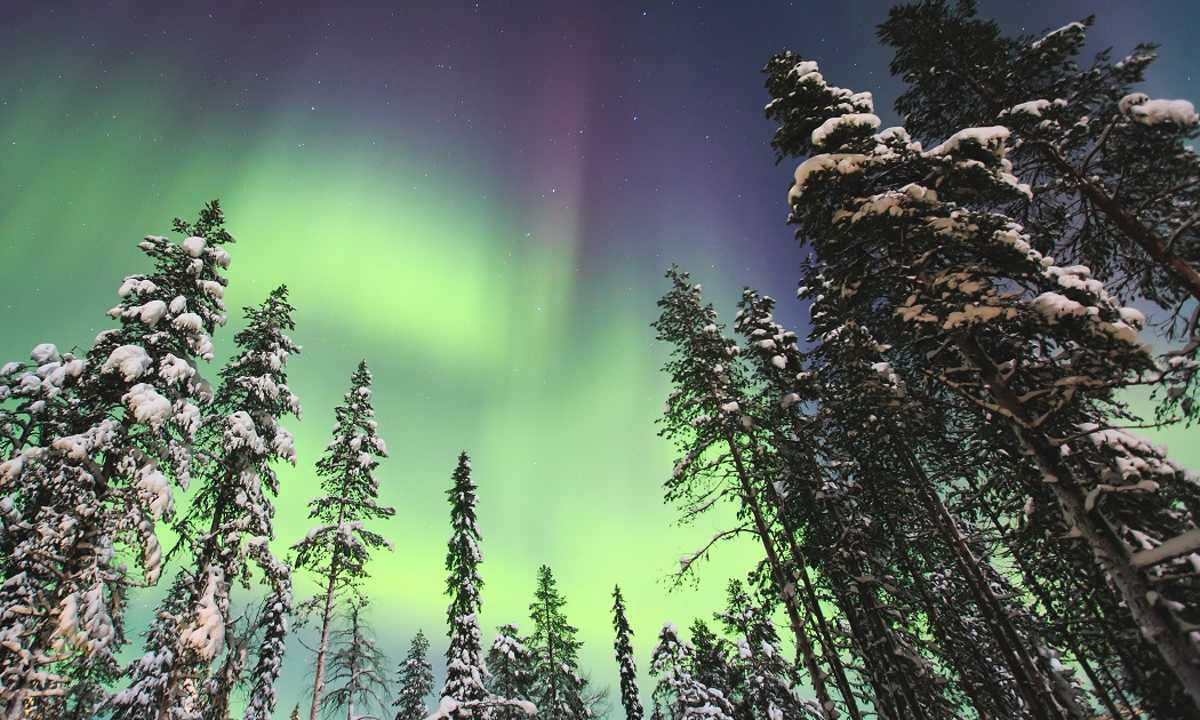 Shu_3_shu_all_Northernlights2